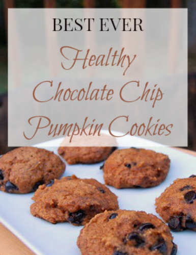 healthy pumpkin chocolate chip cookies