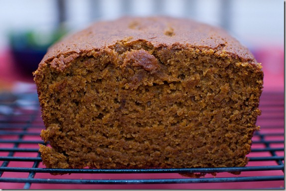 pumpkin gingerbread-7